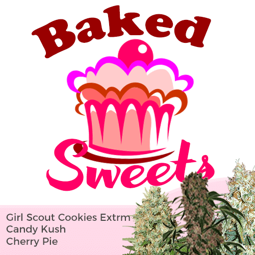 Order Baked Sweets Mixpack Cannabis Seeds