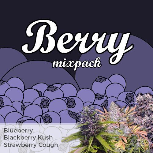 Order Berry Mixpack Cannabis Seeds