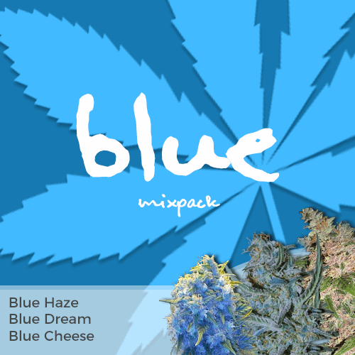 Order Blue Mixpack Cannabis Seeds